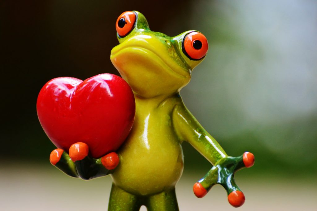 heart frog sculpture love