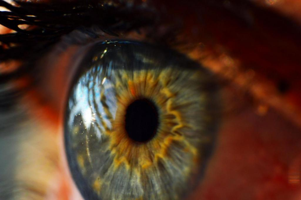 real photographic eye detail